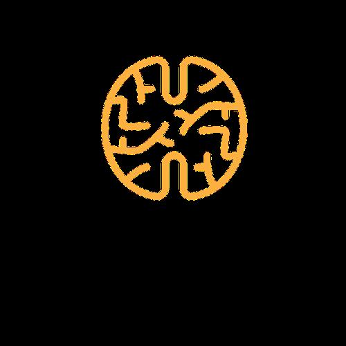 logo anatomika